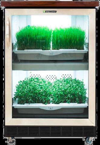 Urban Cultivator project!